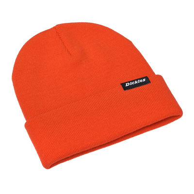 Dickies Alaska Orange